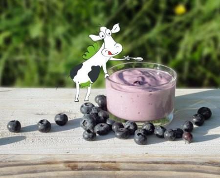 Heidelbeere-Joghurt